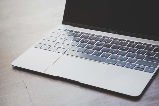 ブログを立ち上げてすぐにブログランキングサイトは登録したほうがいい?