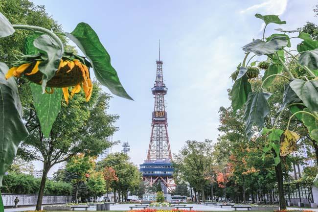 保温性重視!札幌のビル内では電波の届かない場所がしょっちゅう・・・