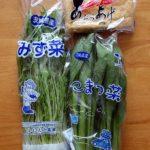 使う出汁は共通でええよね♪小松菜と水菜の炊いたんときざみハイカラそば