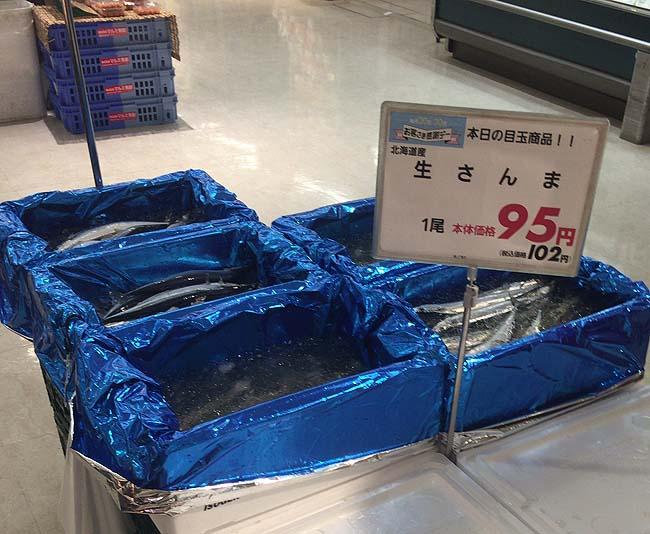今年はサンマが大漁!ついに生秋刀魚が100円切ってきて初焼きサンマと刺しサンマに!(北海道根室産)