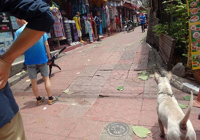 海外一人バンコク旅行で遭遇したおっかなびっくり危険な出来事とは?いや~やばかったよ本当に