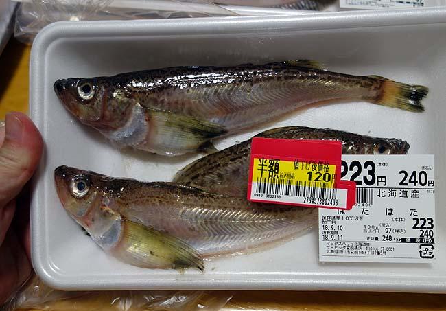 北海道産「ハタハタ」が半額!この繊細な身なら関西風の薄味煮付けが一番やね
