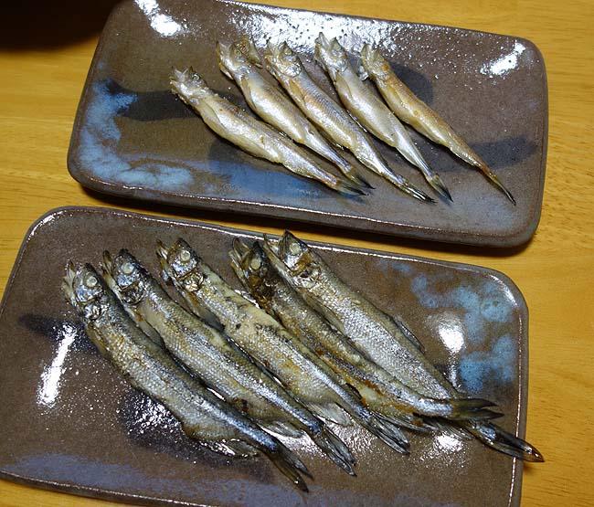 あなたが普段食べているのはニセシシャモです!これが北海道産本ししゃも(オス・メス)の味だ!