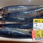 おっきい鰯が5尾で99円!鮮度的に疑問やからいわしの煮付け(北海道式味付け)