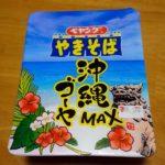 ペヤングやきそば「沖縄ゴーヤMAX」その味はいかに?ペヤングはいつも冒険心満々やね