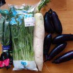 いただきもののナスそして見切り品の大根・ほうれん草・水菜で節約野菜の煮物
