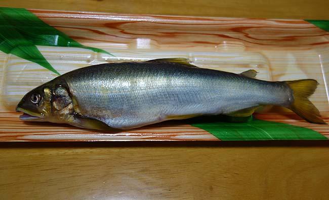北海道ではまずお目にかかれない[鮎]やっぱグリルで「あゆ塩焼き」に