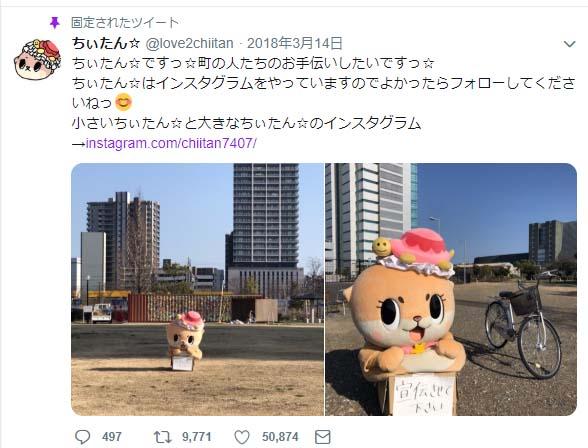 コツメカワウソの妖精の赤ちゃん「ちぃたん」にTwitterフォローされた!