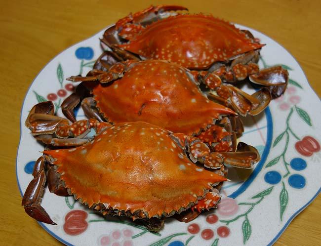 渡り蟹が1ハイ199円!塩茹でにして食った後は手作り味噌らーめんの出汁に