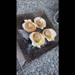 【北海道旭川日帰りバーベキューその3】北海道の貝代表といえば帆立ホタテ 今回は炭火焼BBQでバター醤油